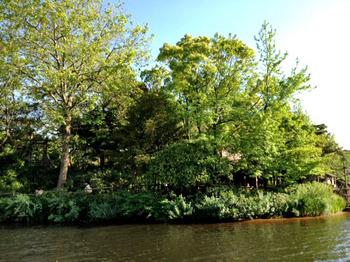 20120514島.jpg